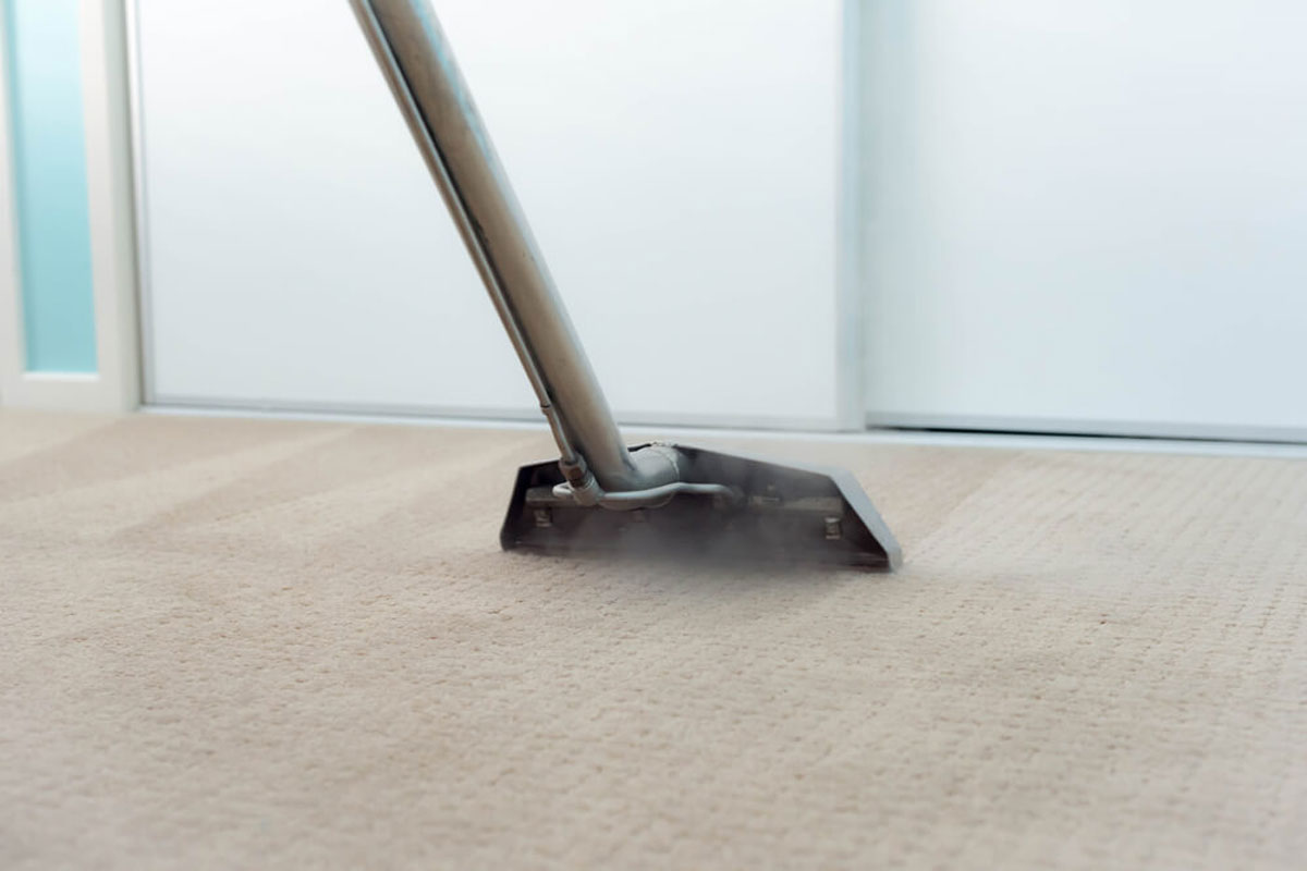 Why Everyone Should Choose a Professional Carpet Cleaner?
